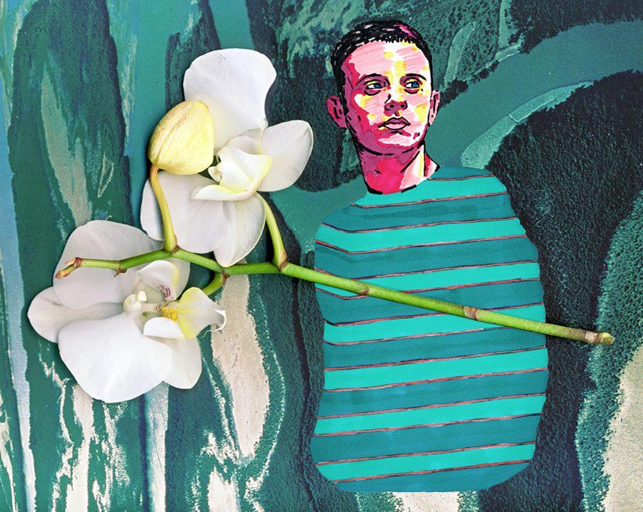 ghemon orchidee