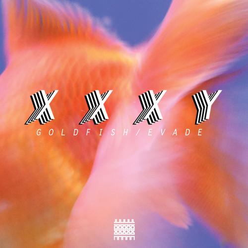 xxxy goldfish