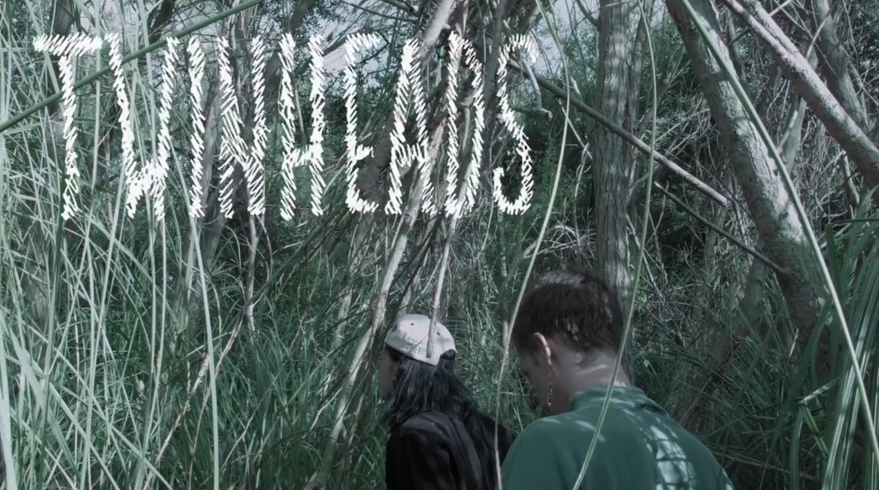 Twinheads: il documentario sui gemelli Wyatt and Fletcher Shear ovvero The Garden
