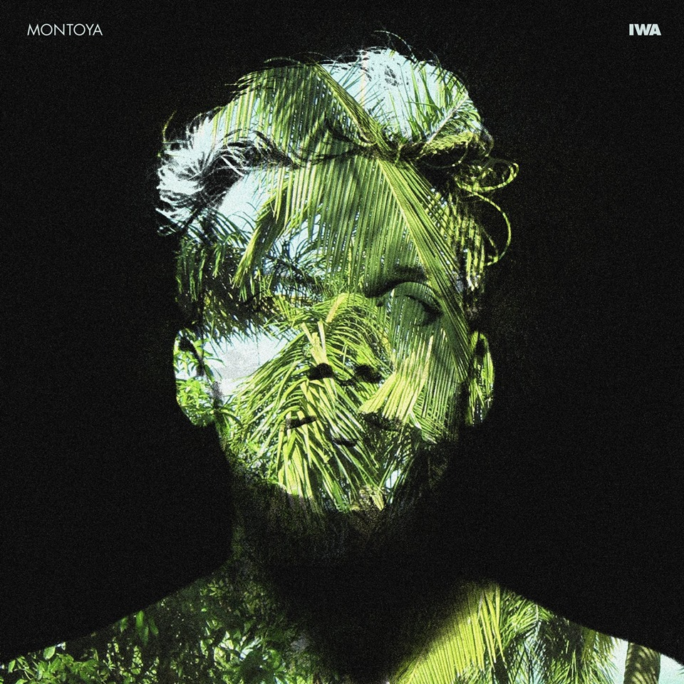 Montoya - IWA - White Forest