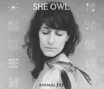 She Owl – Animal Animal / Video Premiere